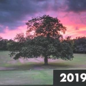 2019 Calendar of Warley Woods by Simon Lea