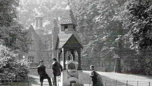 The Story of Warley Woods - past, people and park: online talk