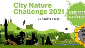 City Nature Challenge - 2021- Birmingham & the Black Country